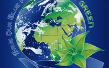 Biomímesis Organizacional: más allá de la Economía Circular