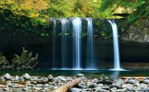 Debemos recuperar el paraíso en la Tierra si queremos evitar el colapso